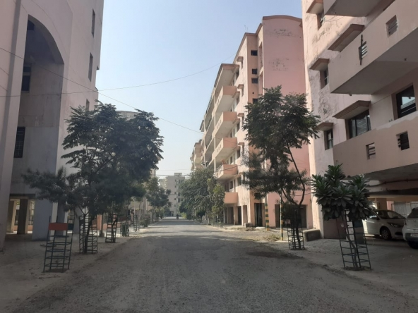 MIG Flats for Rent at Ludhiana (1)